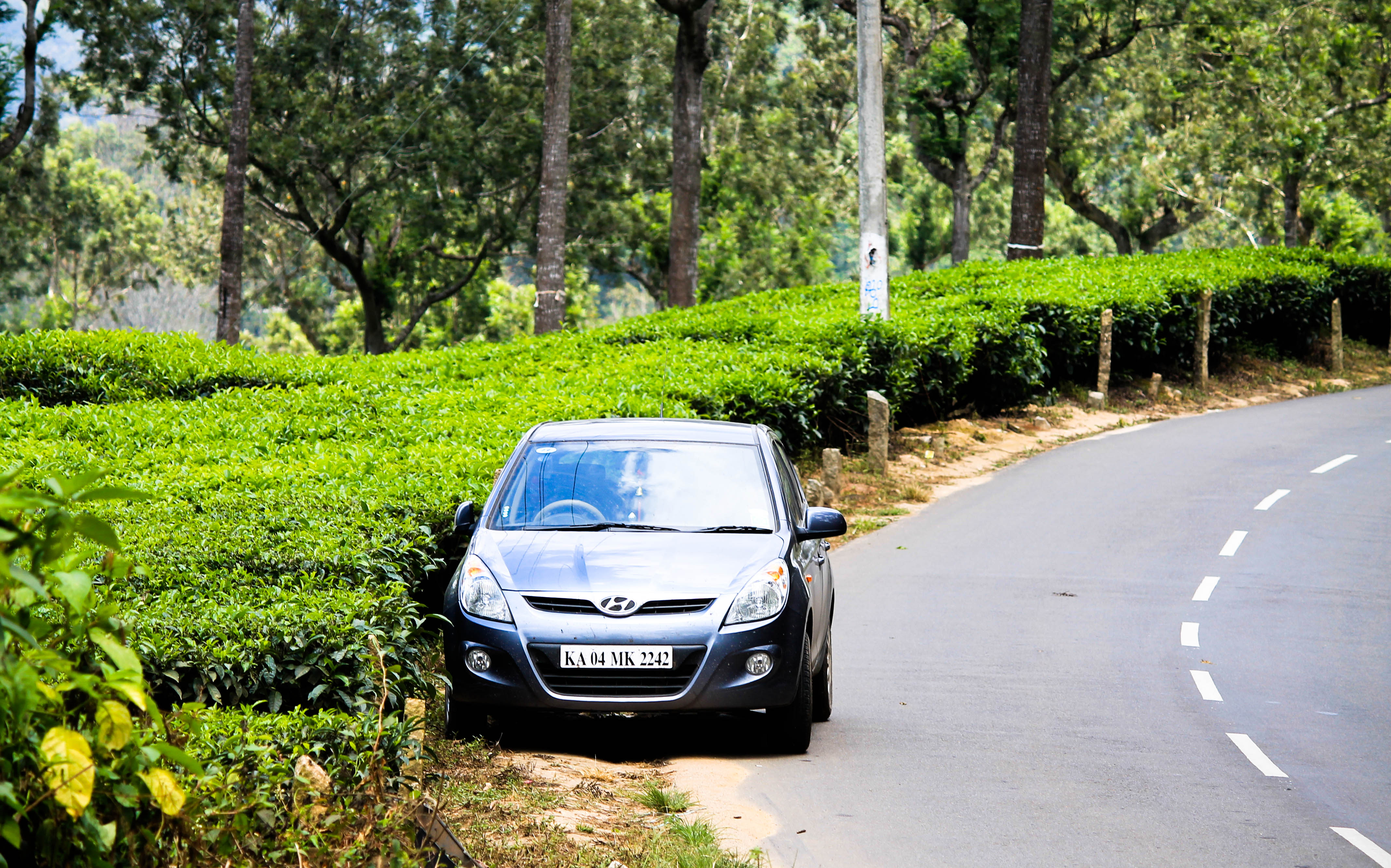 Drivelogue Kerala: Theni to Kumily – From the plains to the